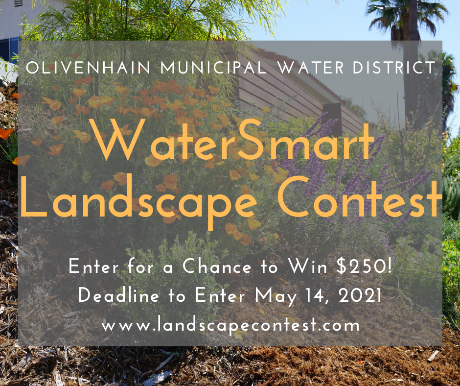 water smart landscape contest flyer