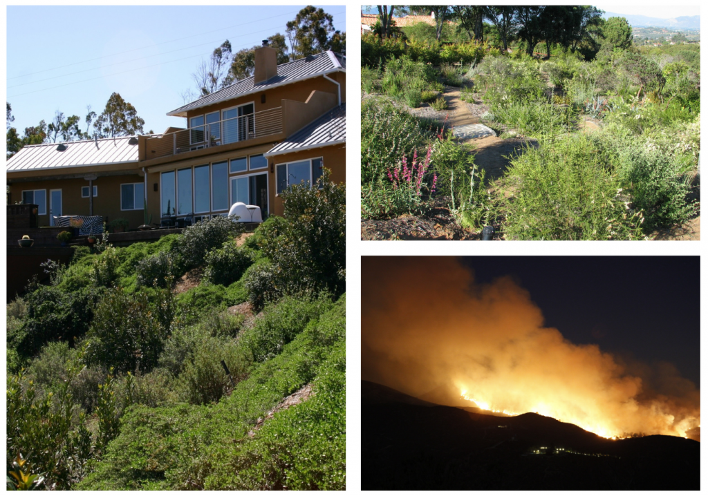 Collage of firewise landscapes and fire on a hillside