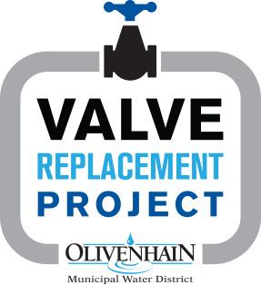 Valve Replacement icon